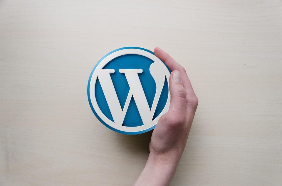 【アフィリエイトの始め方④】WordPressでブログを立ち上げよう! ~導入編~